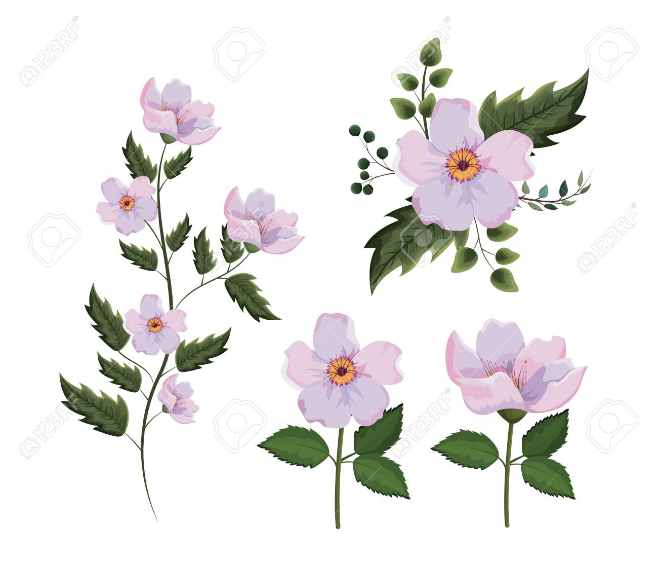 set exotic flowers with branches leaves plants vector illustration - 124856301