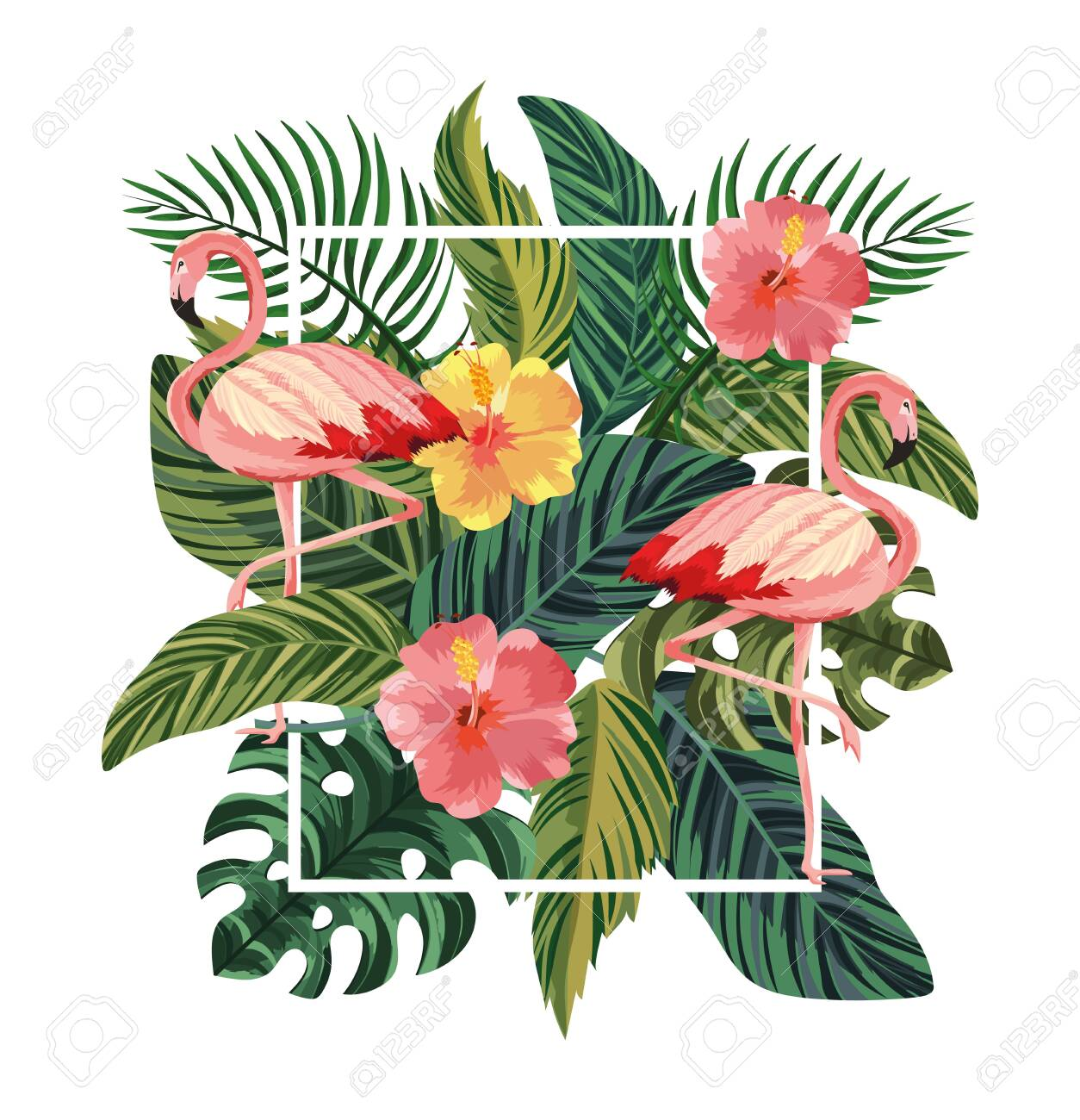 frame with flamingos and tropical flowers with leaves vector illustration - 124357100