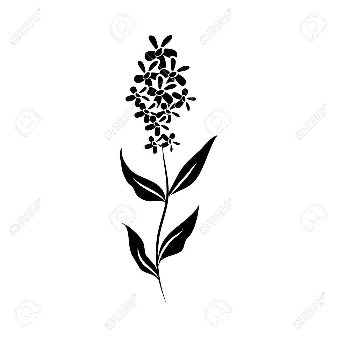 Minimalist Tattoo Flower Stem Petals Silhouette Art Herb And Royalty Free Cliparts Vectors And Stock Illustration Image 154414016