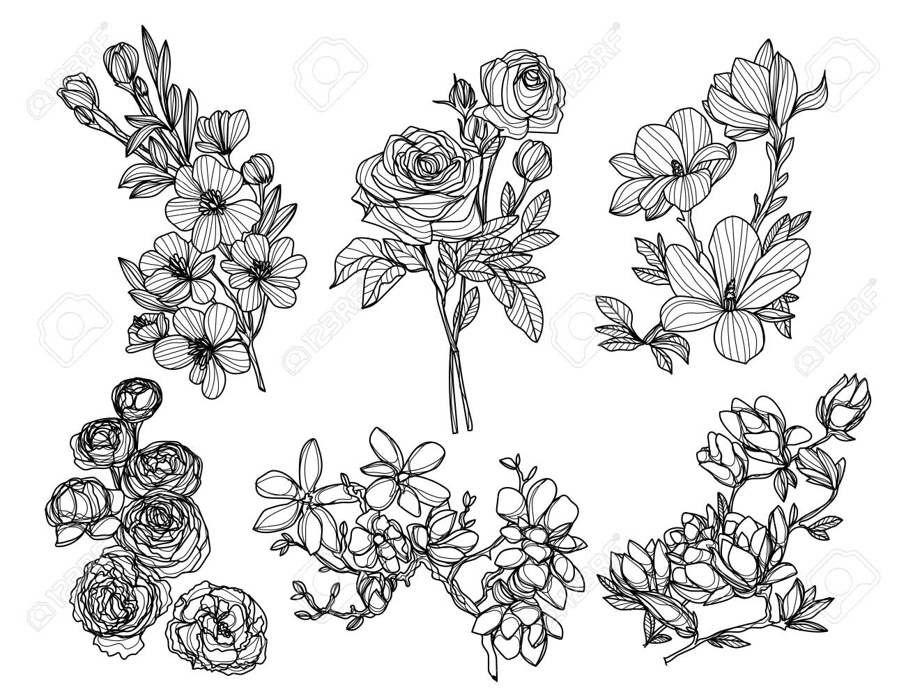 flowers hand drawing and sketch black and white - 137648377