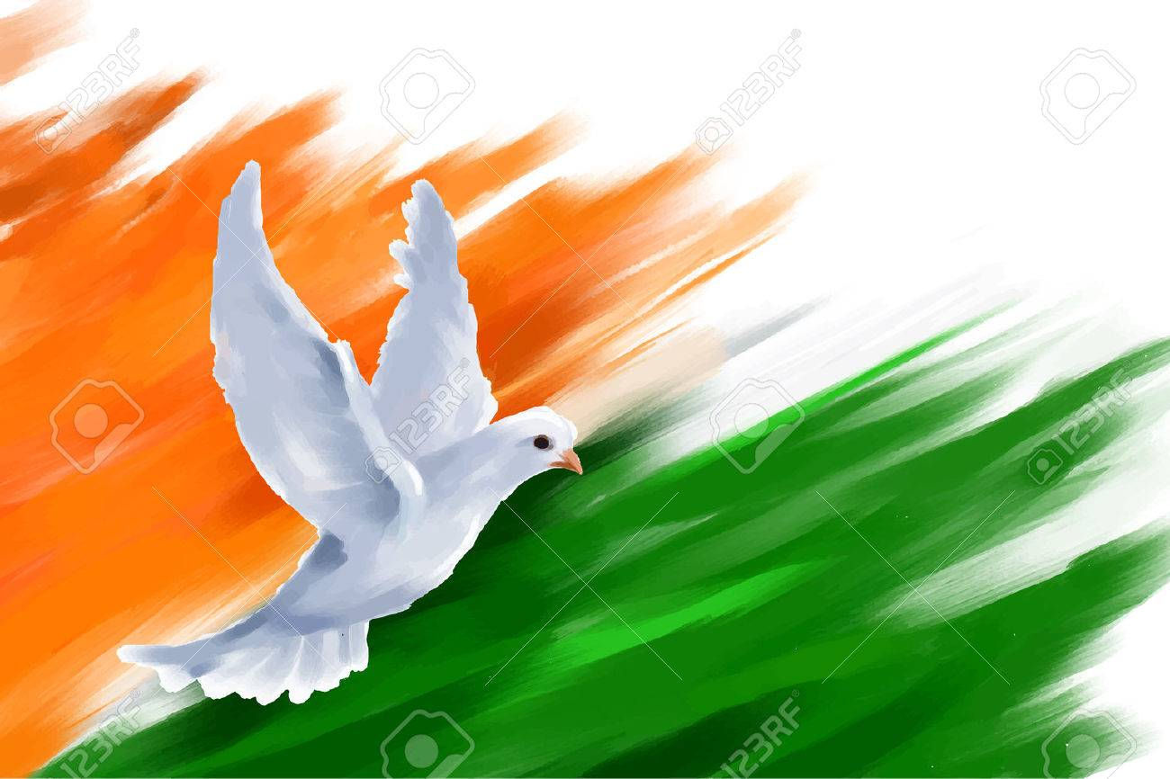 illustration of dove flying on Indian Flag for Indian Republic Day - 35236352