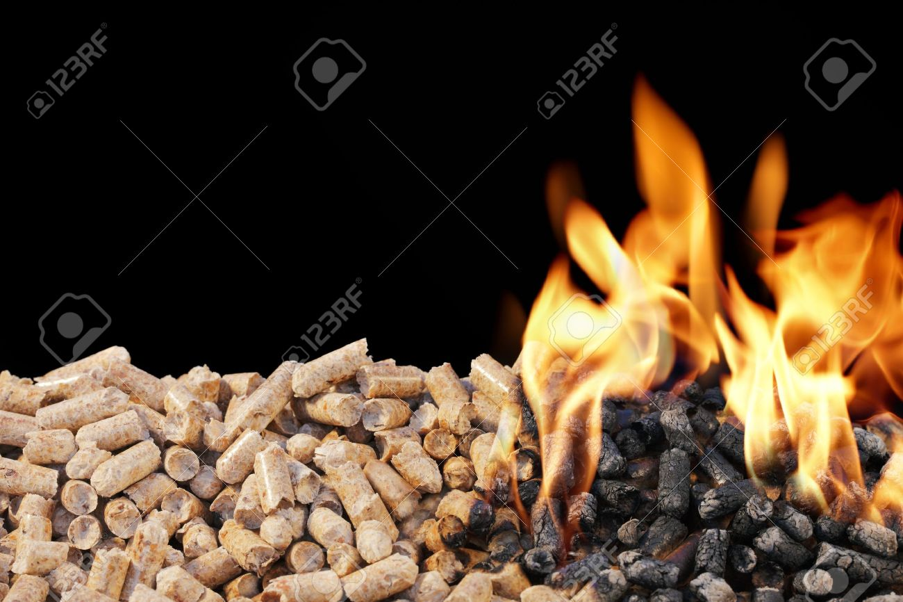 Superieur Burning Wood Pellets. Wood Pellets Are A Type Of Wood Fuel. Stock Photo