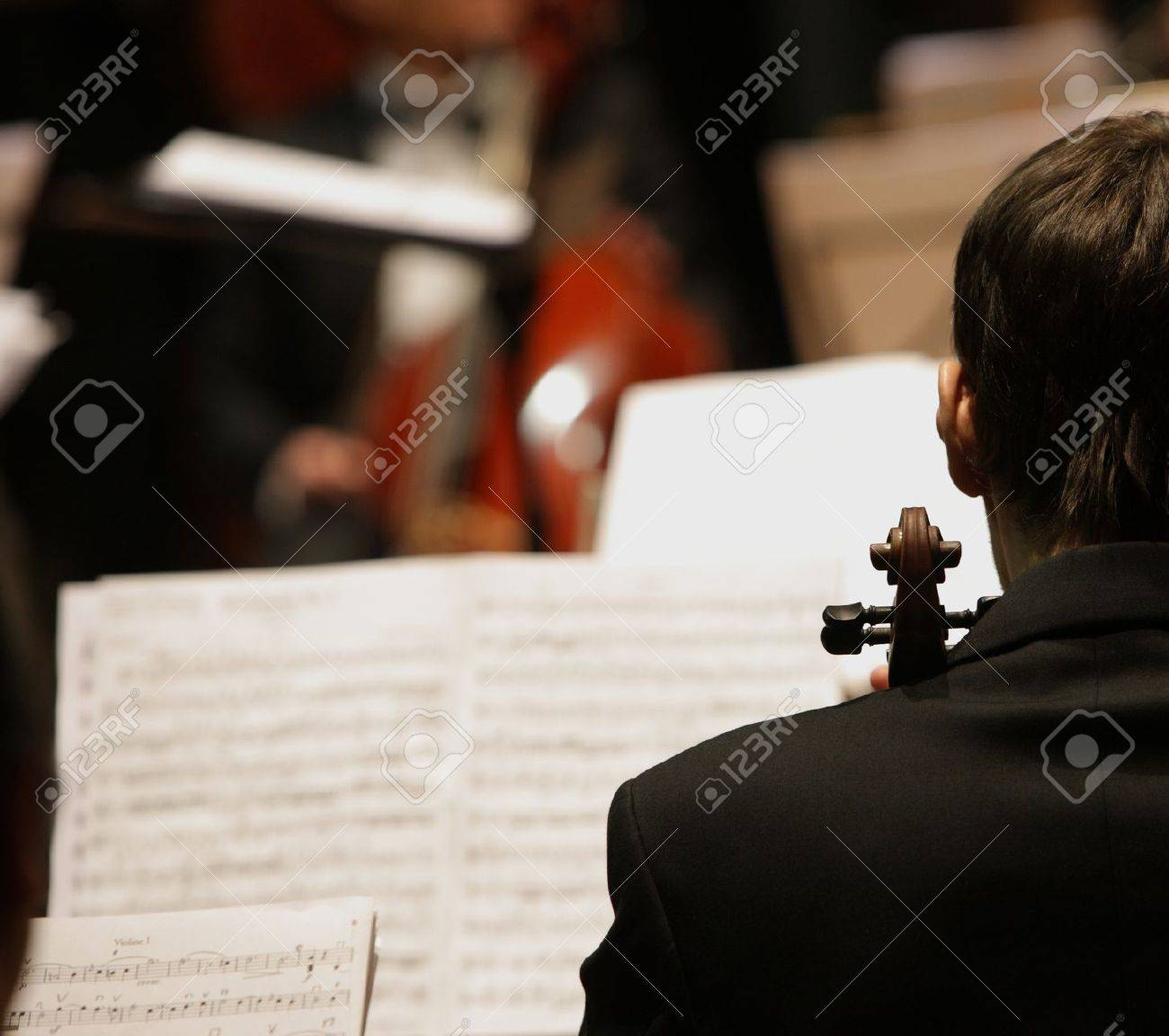 violinists during a classical concert music Stock Photo - 12079076