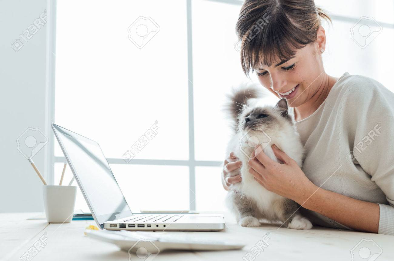 Young woman sitting at desk and cuddling her lovely cat, togetherness and pets concept Stock Photo - 52944799