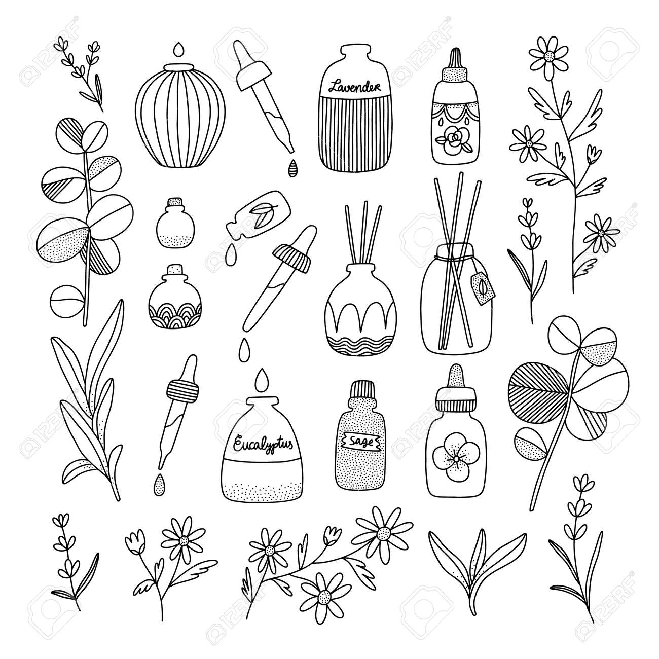 Aromatherapy aesthetic with different oil bottles and plants, vector illustrations set - 164064513
