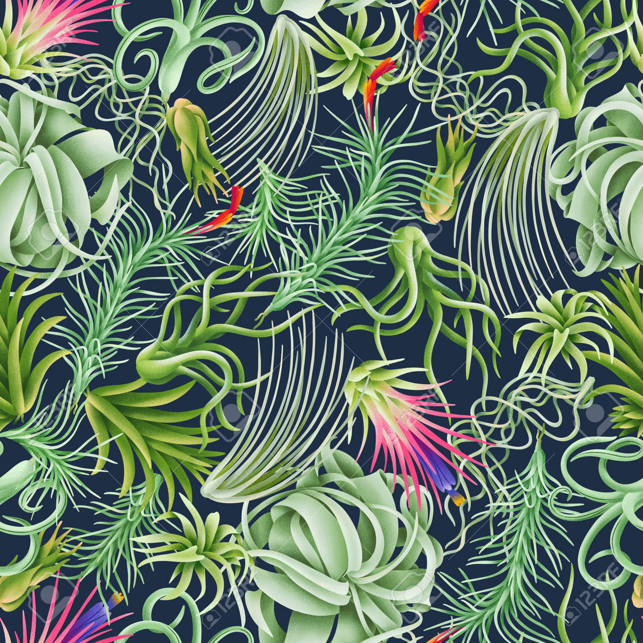 Tillandsia forest, exotic beautiful air plants seamless pattern illustration. Rich and modern background texture - 170268199