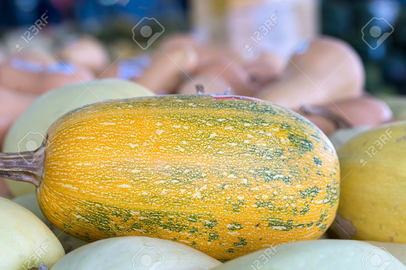 Bunch of orange pumpkins for sale in organic farm for sale to