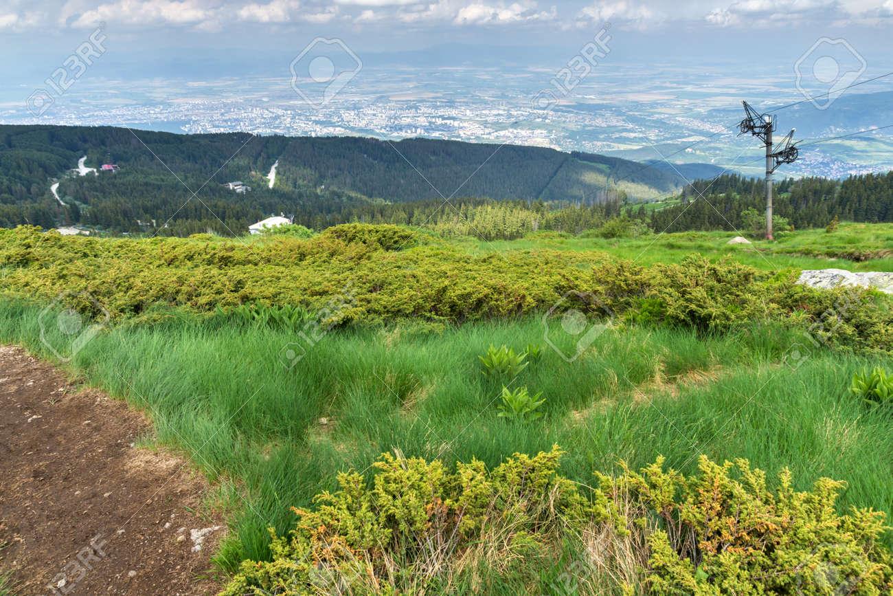 Amazing Summer Landscape of Vitosha Mountain, Sofia City Region, Bulgaria - 125806397