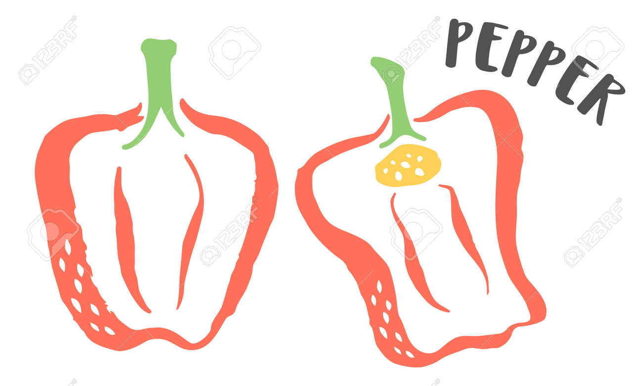 Bell Pepper hand painted with ink brush isolated on white background - 163562809