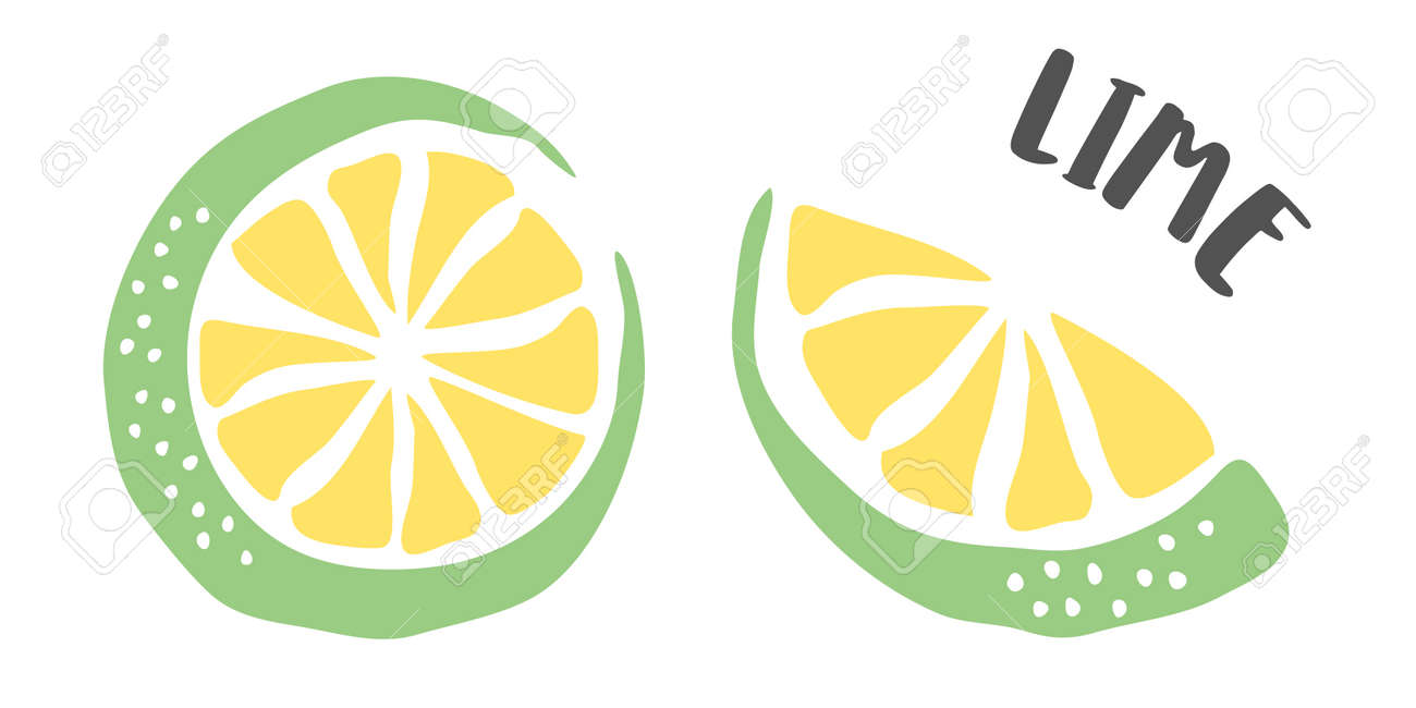 Lime hand painted with ink brush isolated on white background - 167158526