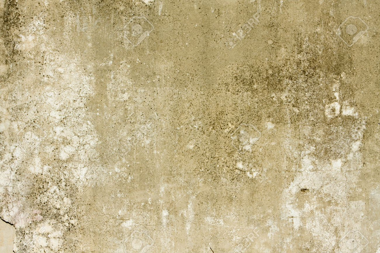 fragment of the old wall texture stock photo picture and royalty