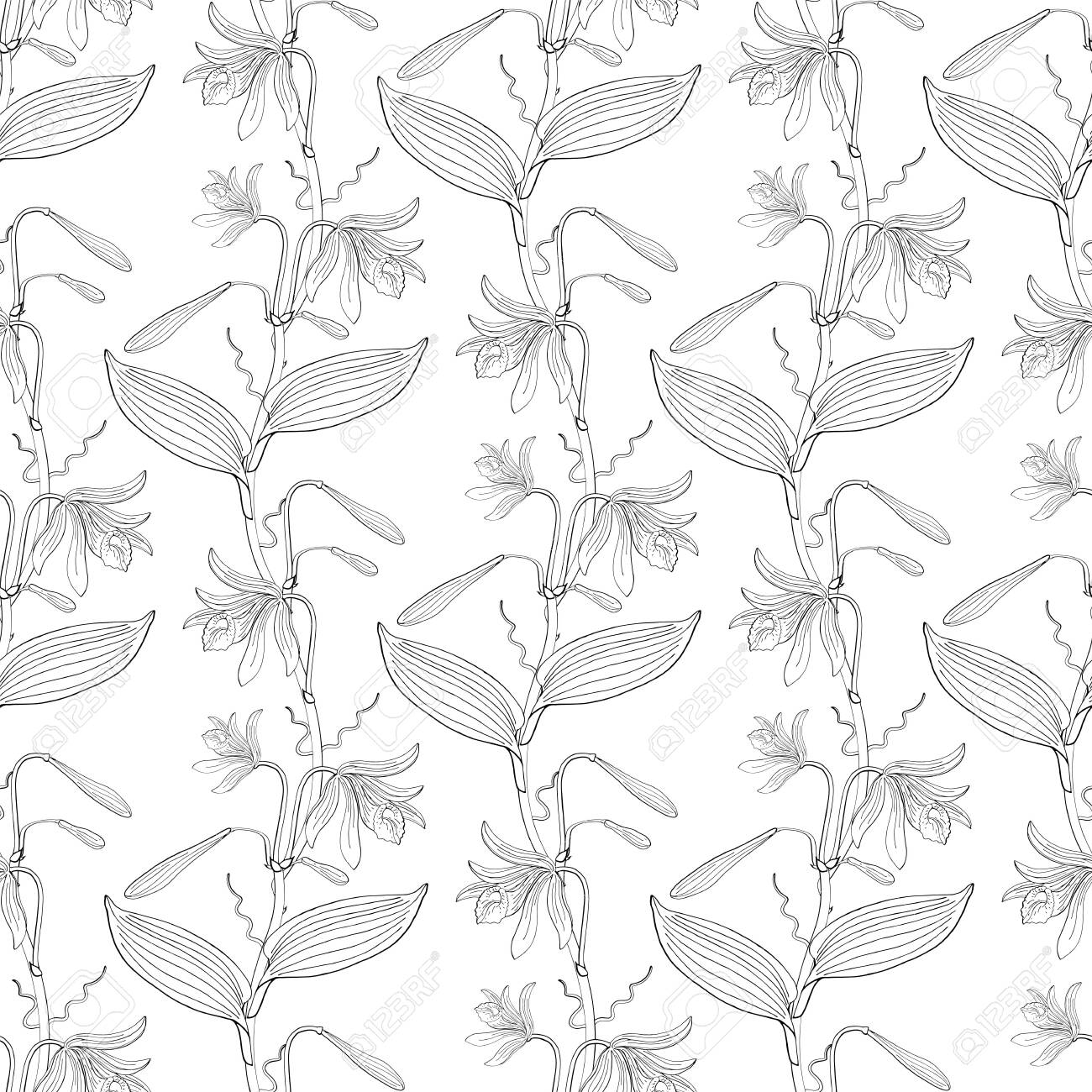 seamless floral pattern with orchid flowers on white background - 124518766