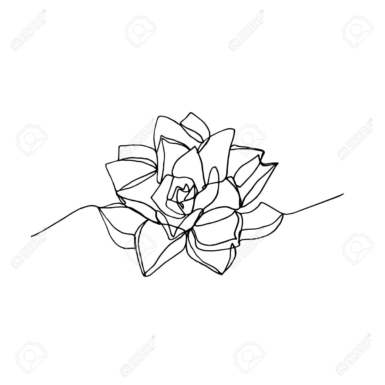Hand Drawn Minimalistic Succulent One Single Continuous Black Royalty Free Cliparts Vectors And Stock Illustration Image 123859321