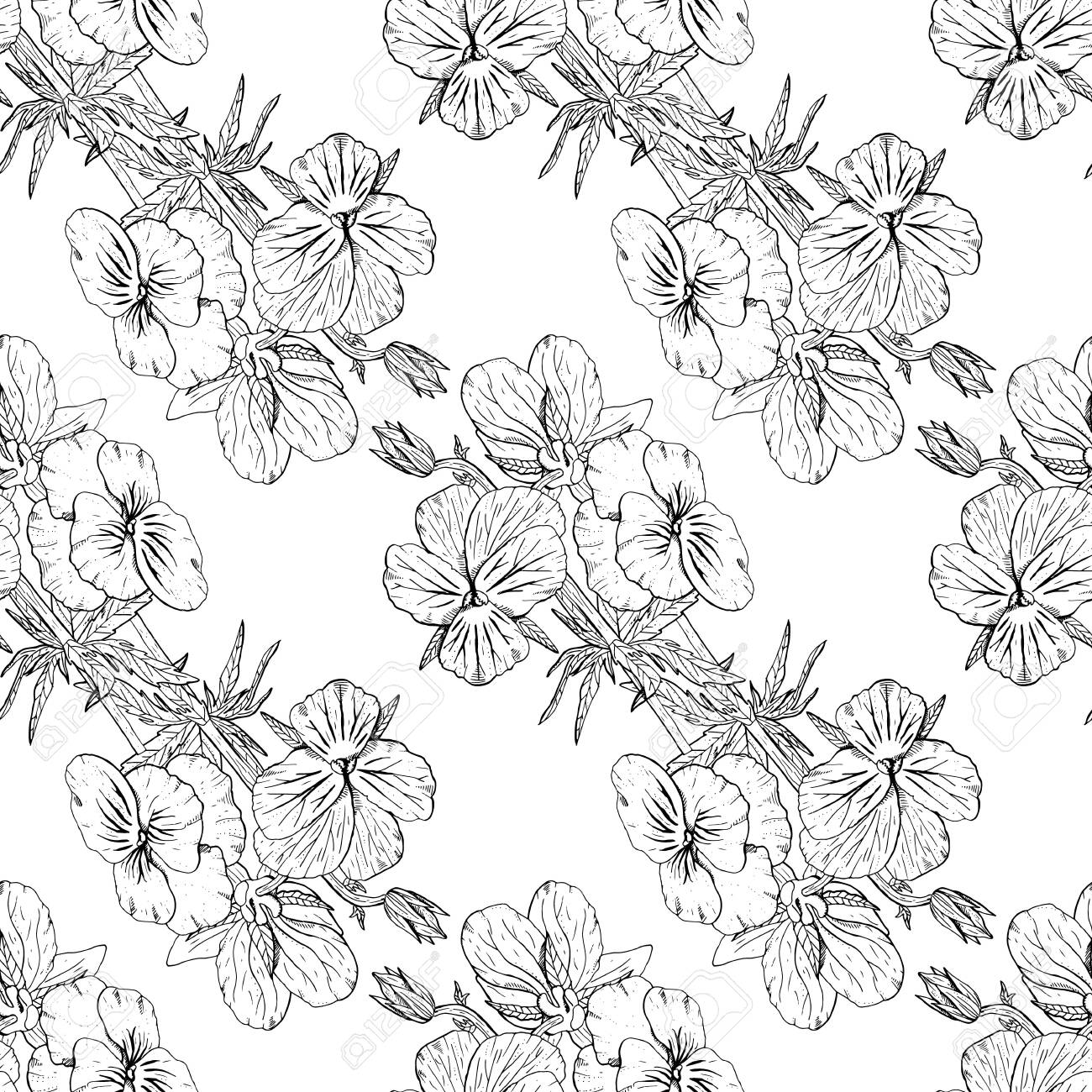 Monochrome floral seamless pattern with hand drawn pansy flowers on white background. Stock vector - 152795506