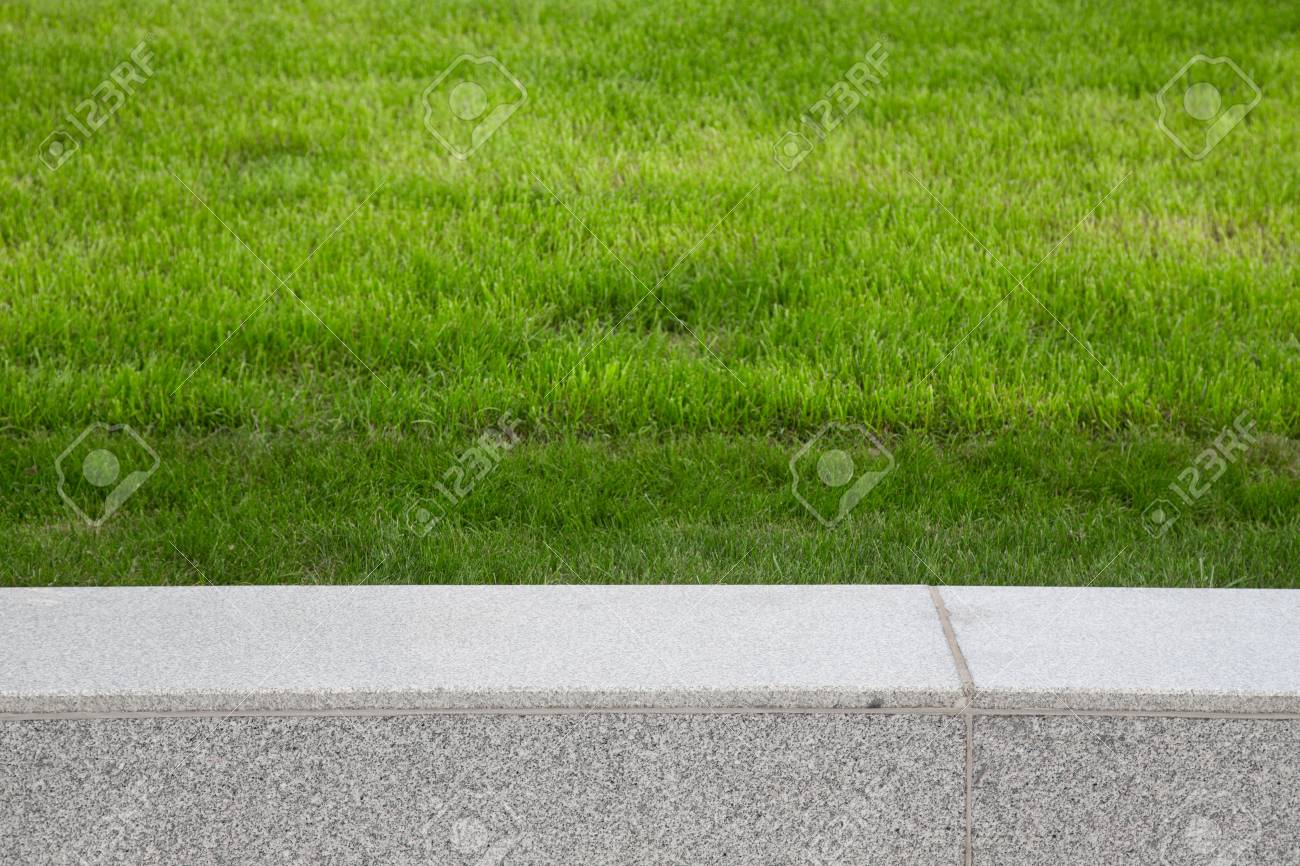 Green grass on the lawn. Selective focus. Shallow depth of field. - 45257374