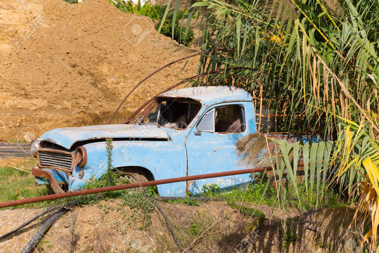 old broken car under the palm tree stock photo picture and royalty