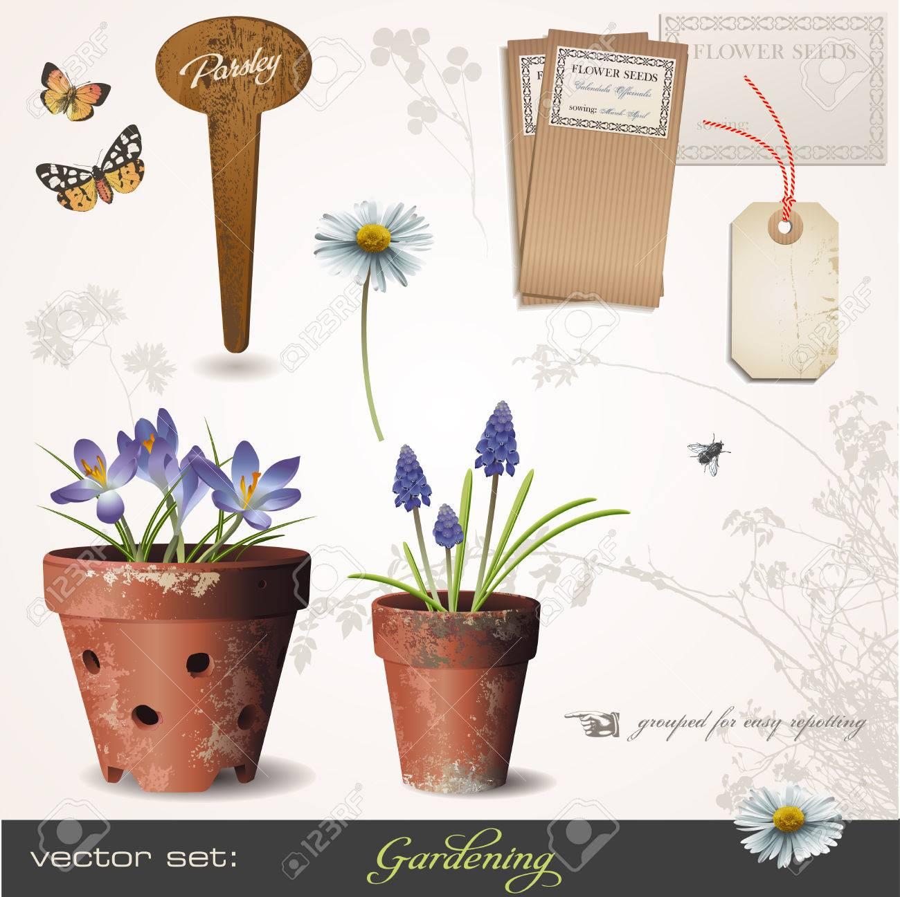 Giardinaggio Fiori.Vettoriale Giardinaggio Con Fiori In Eta Compresa Tra Vasi Di