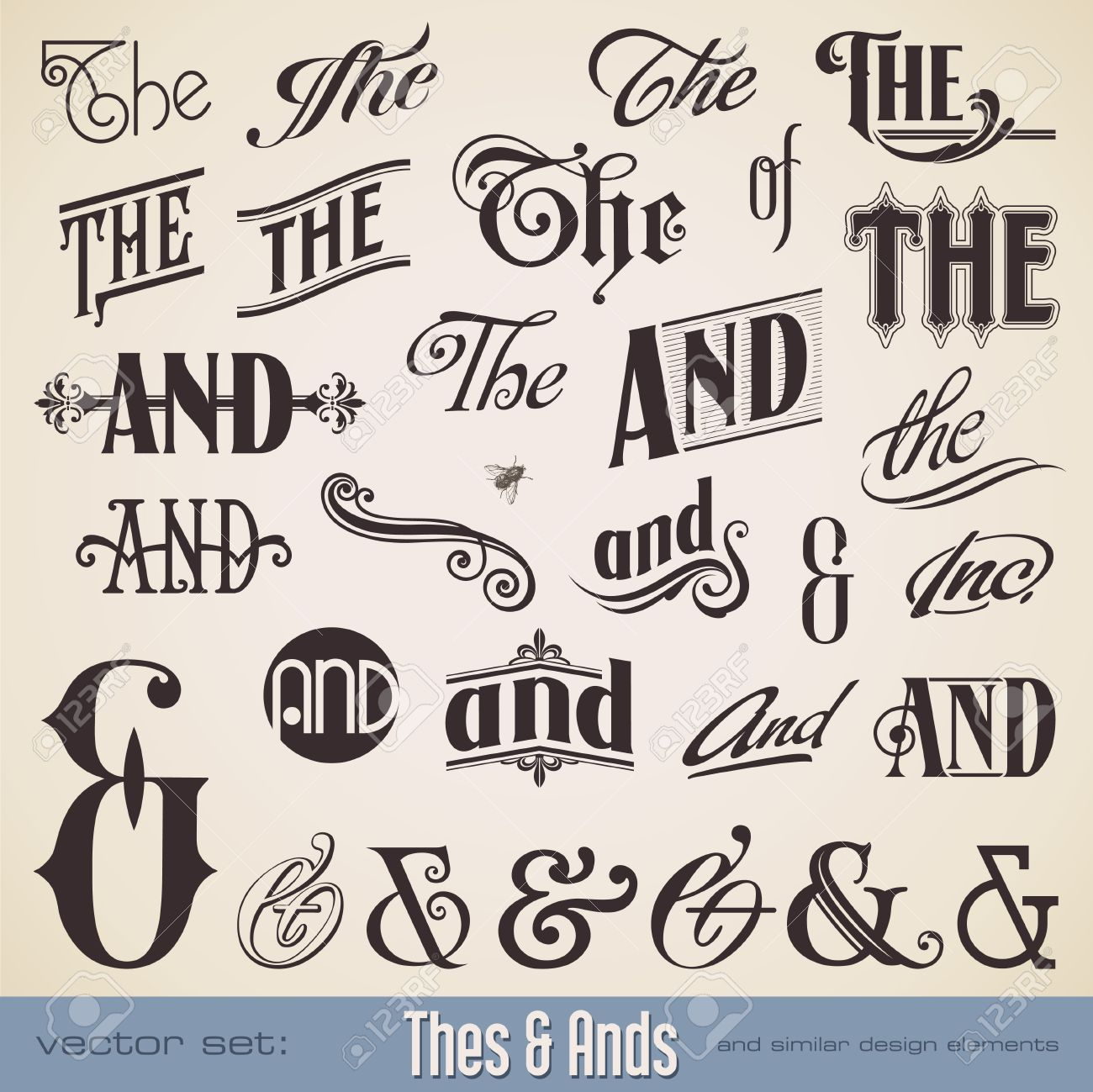 vector vector set ornate hand lettered thes ands perfect for headlines signs or similar graphic projects