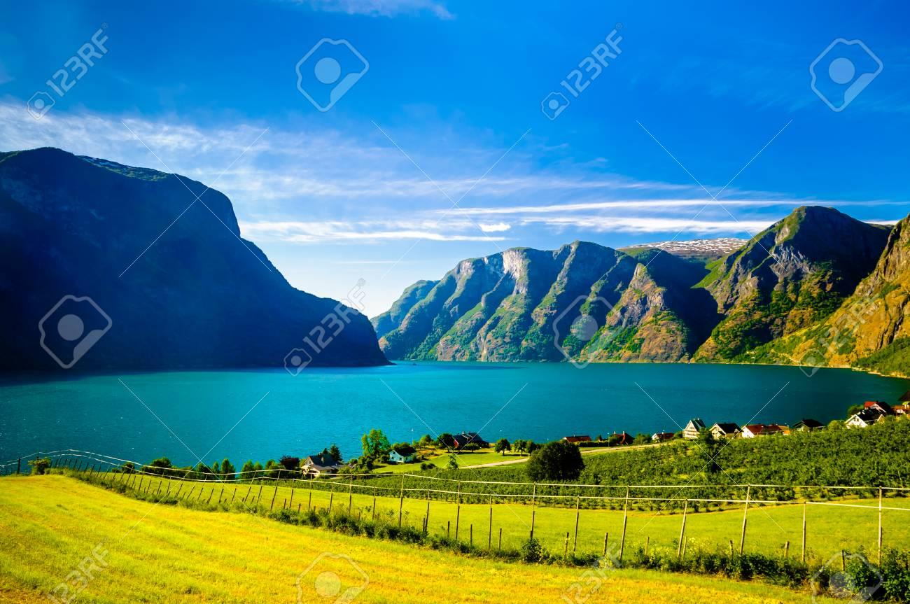 Fjord landscape of Naeroyfjord - Aurlandsfjord in Norway - 77228658
