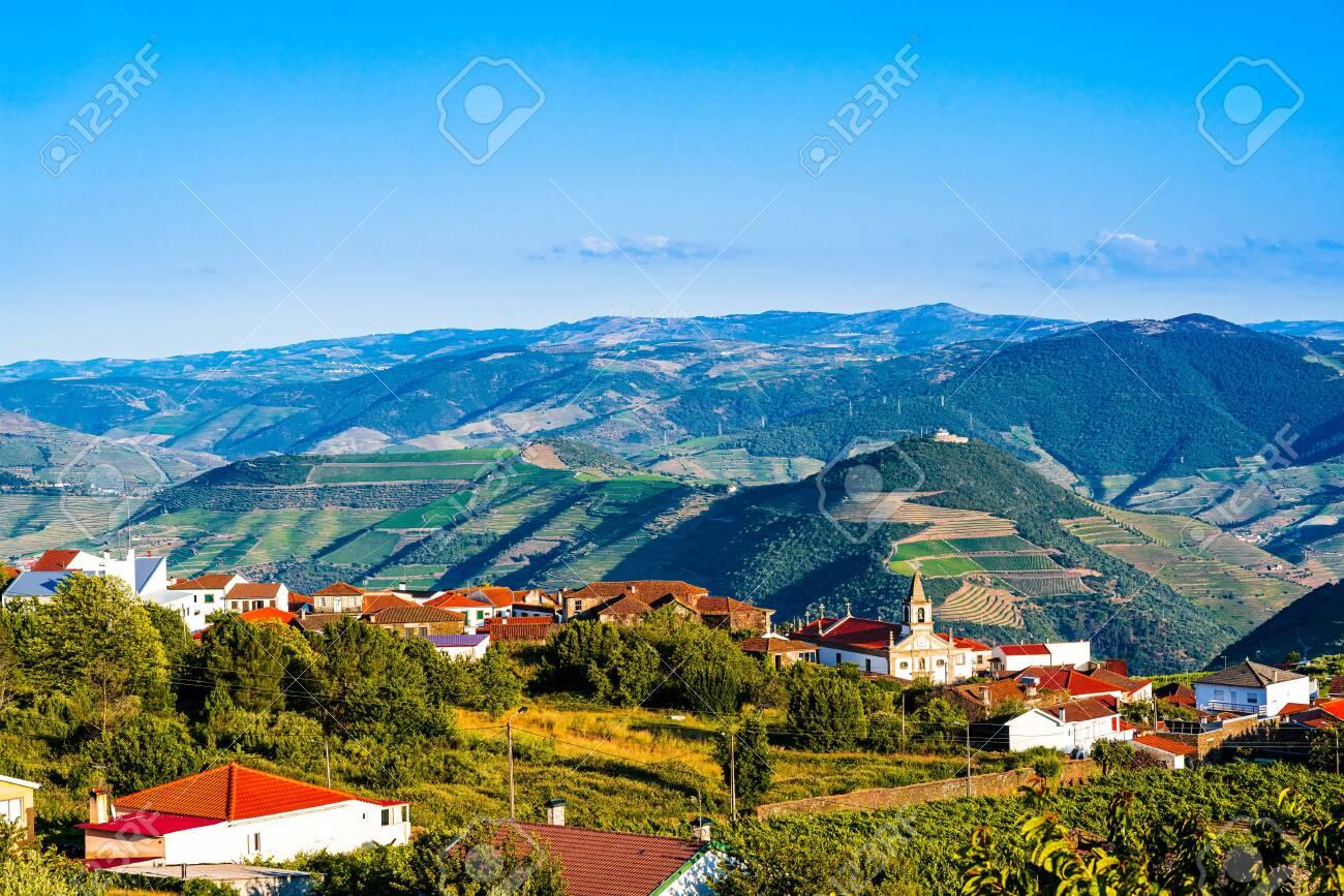 View on Vineyard in Provesende village in the Douro Valley region, Portugal - 142709863