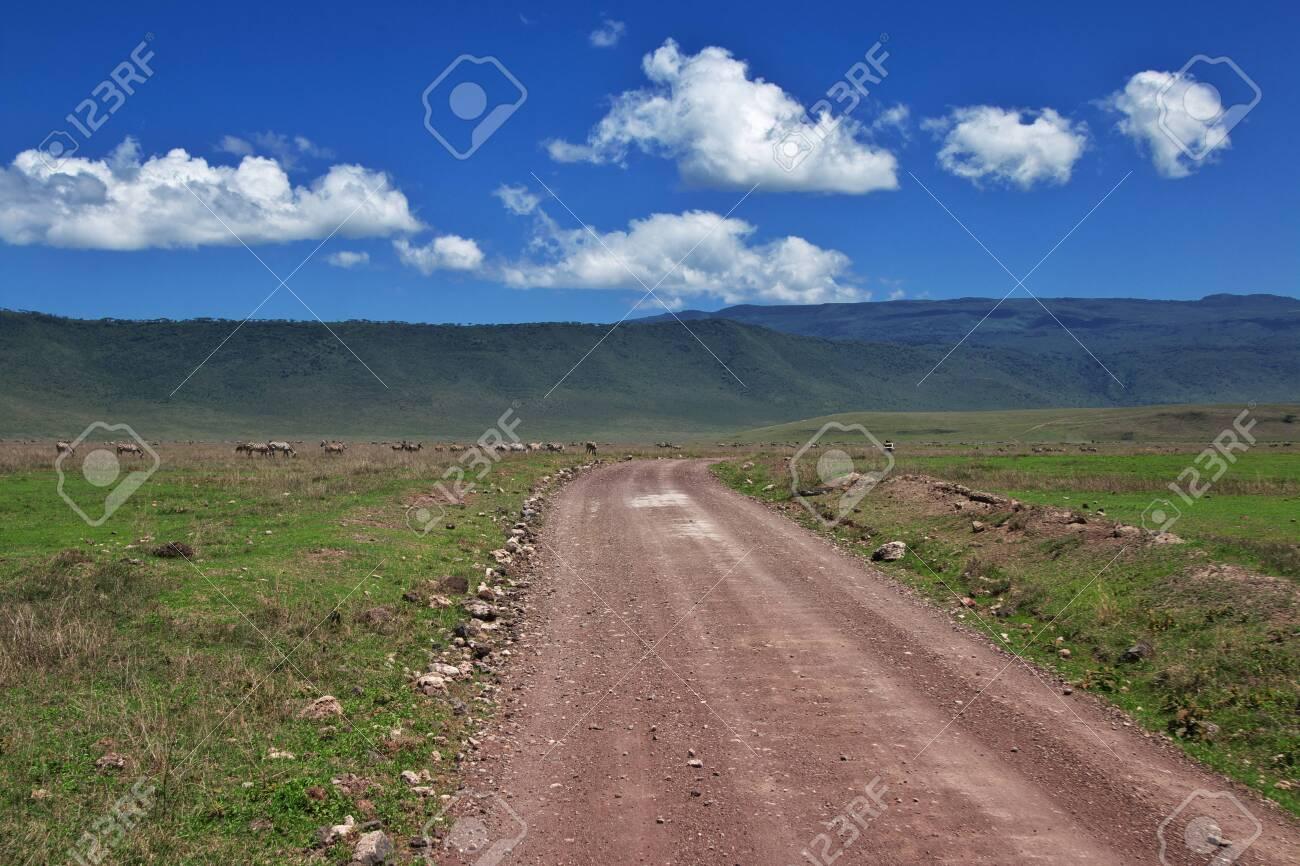 Safari in Kenia and Tanzania, Africa - 124275189