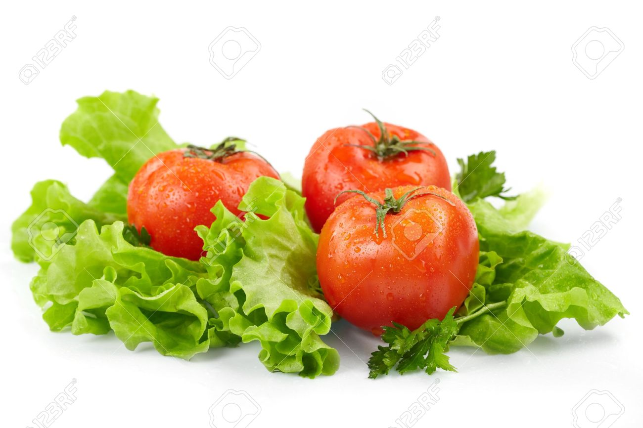 Tomatoes and lettuce  on the  white background Stock Photo - 9049304