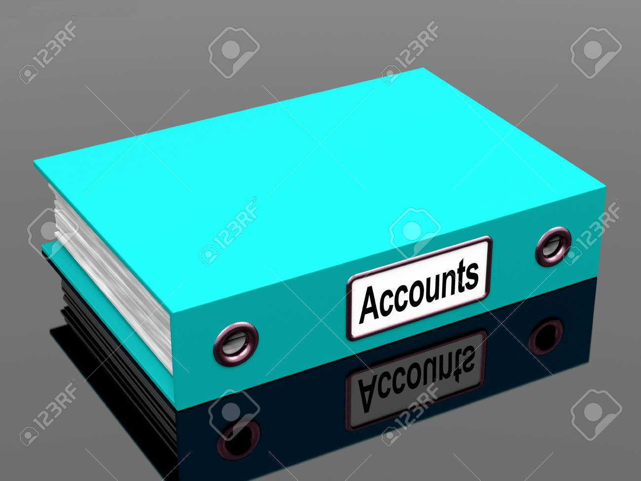 Accounts File Showing Accounting Profit And Expenses Stock Photo - 15083911
