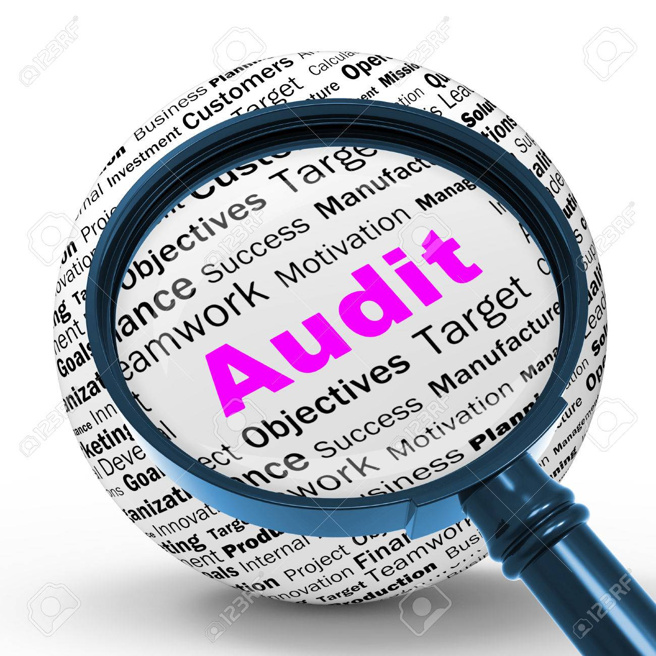 Image result for audit or inspection