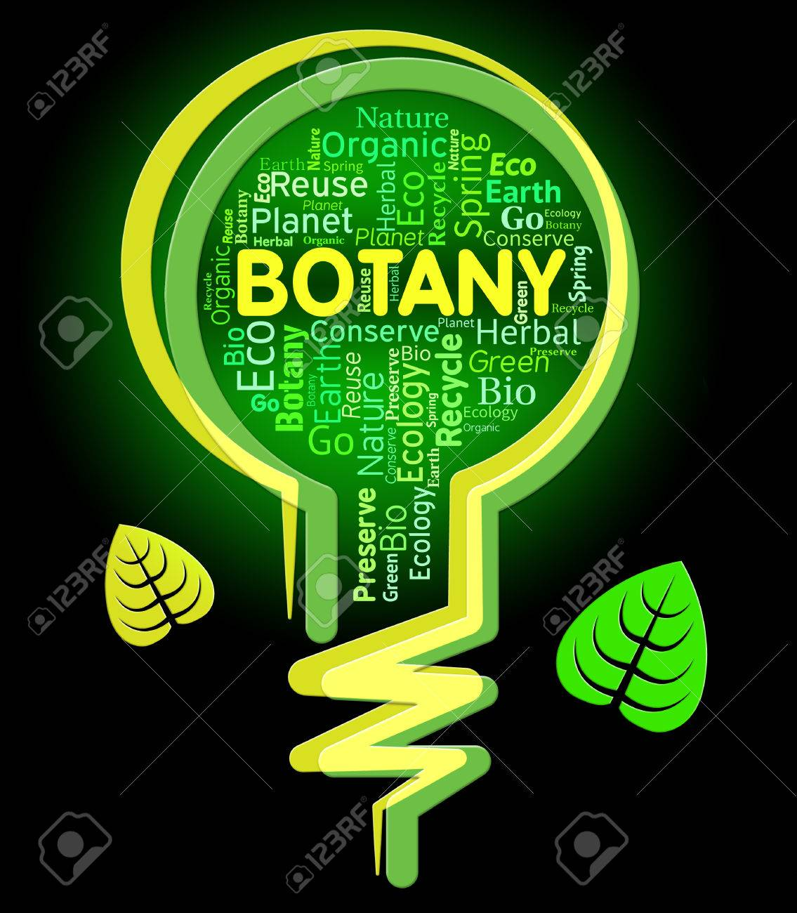 Botany Lightbulb Meaning Rural Eco And Natural Stock Photo Picture