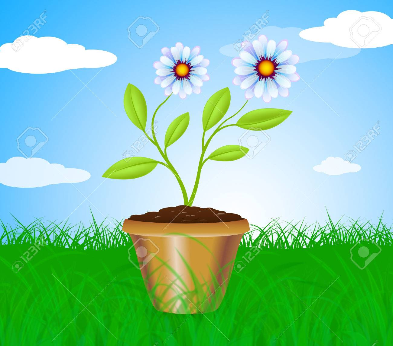 Potted Plant Meaning Cultivation Gardening And Plants Stock Photo