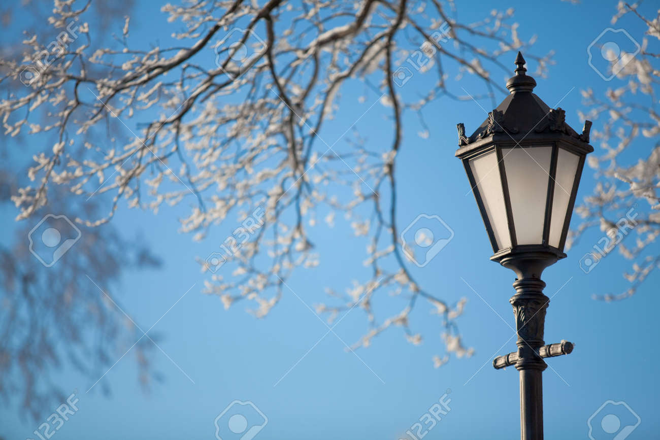 Antique frosty lamppost and beautiful snow covered branches against the azure sky Stock Photo - 6577291