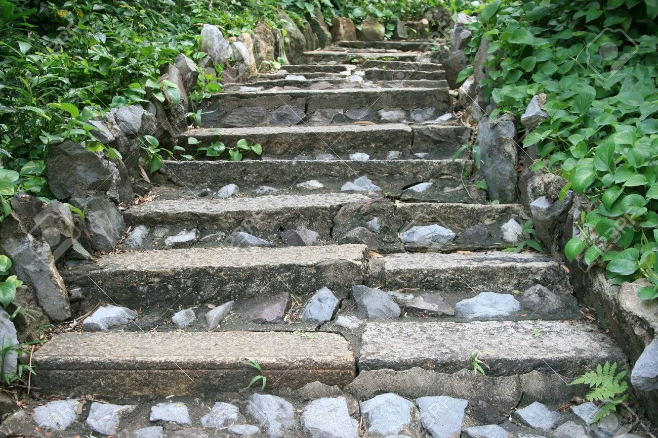 Natural Stone Stairs Landscaping In Garden Stock Photo   25445638