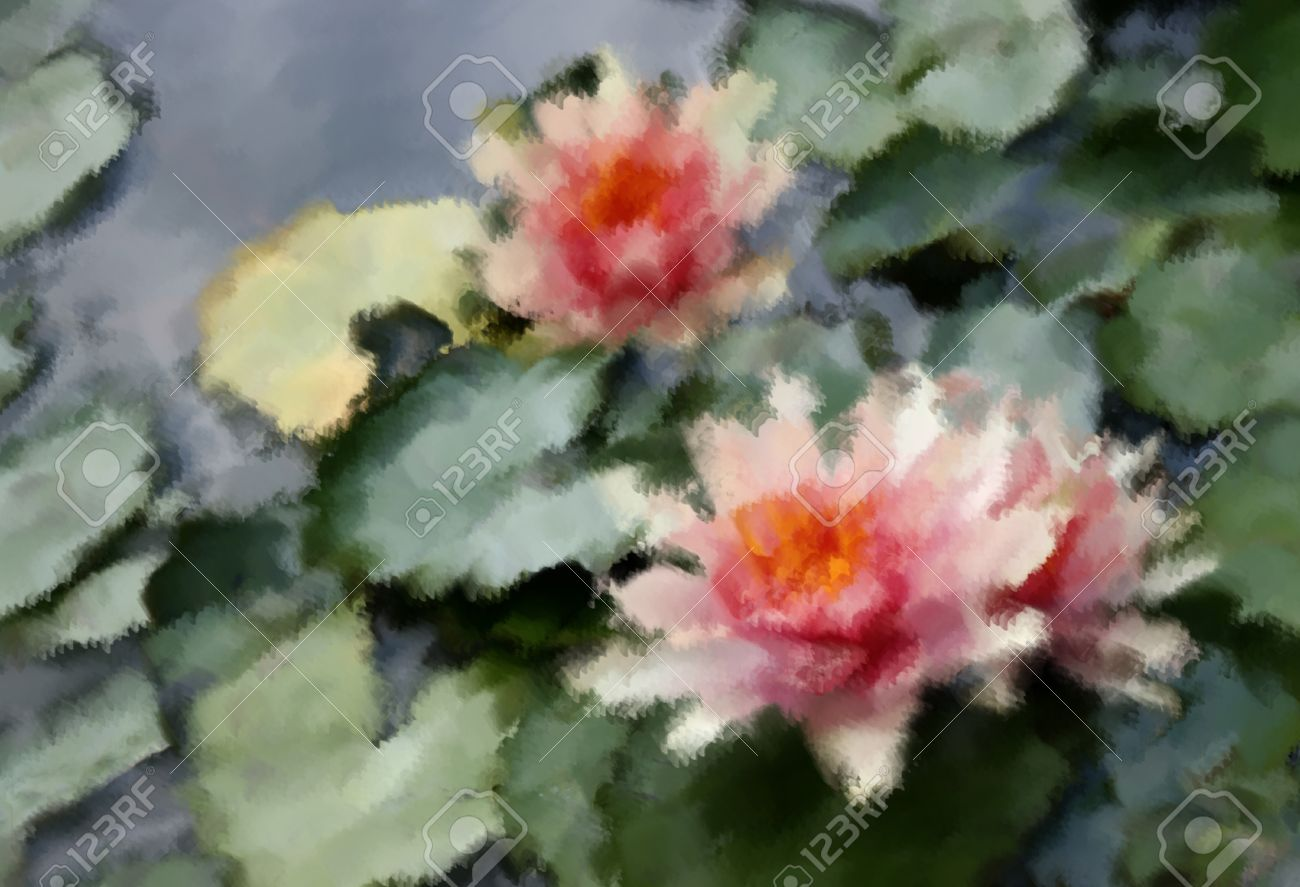 Oil Painting Beautiful Waterlily Or Lotus Flower Stock Photo