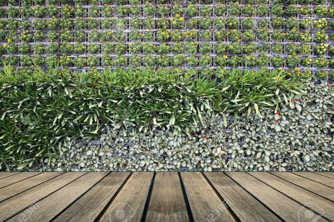 Flower Wall Flower Wall Vertical Garden Stock Photo Picture And Royalty Free