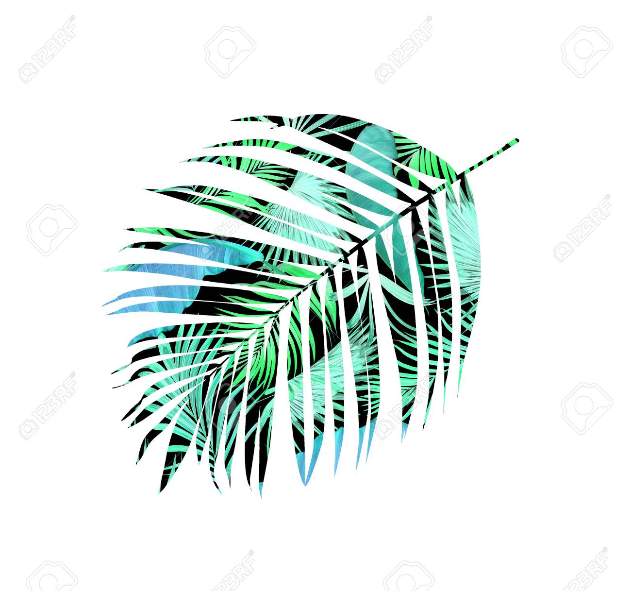double exposure green leaves of palm tree background