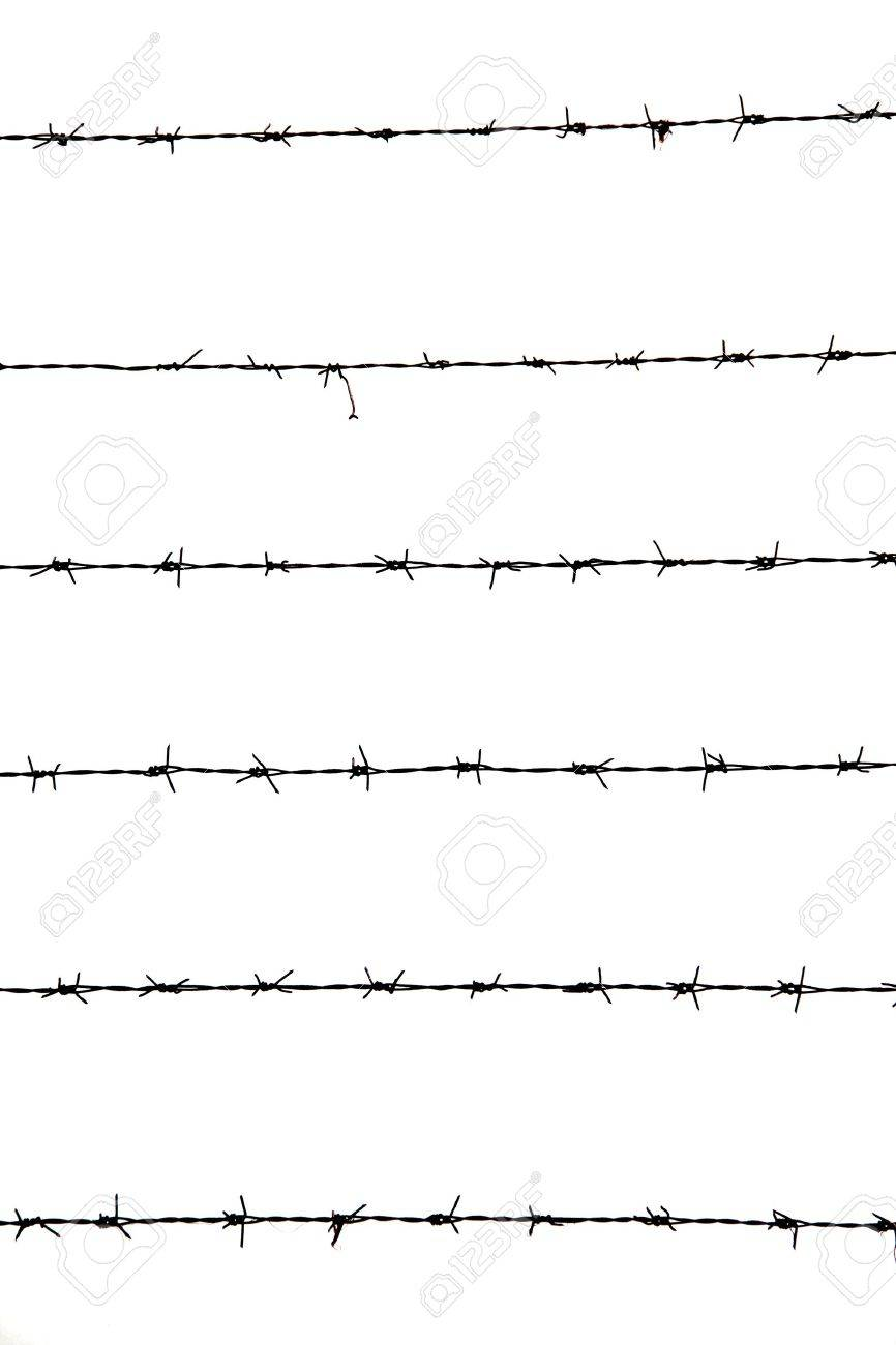 Barbed wires isolated on white background Stock Photo - 14921730
