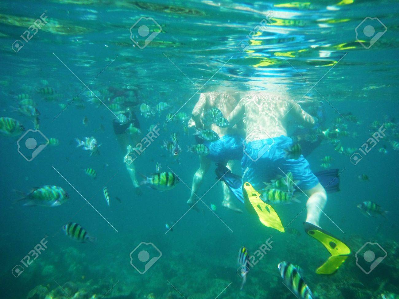 people and fishs Underwater at andaman sea thailand Stock Photo - 14922028