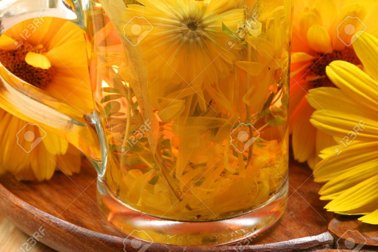 Closeup freshly infused cup of herbal tea. Healing drink and yellow flowers Stock Photo - 7150511