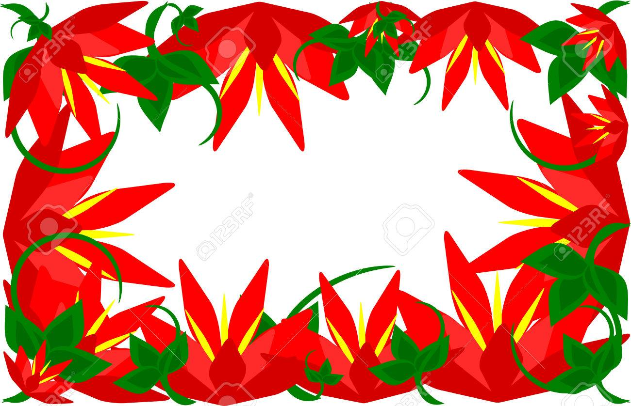 Beautiful Wild Hibiscus Flower Border Royalty Free Cliparts Vectors