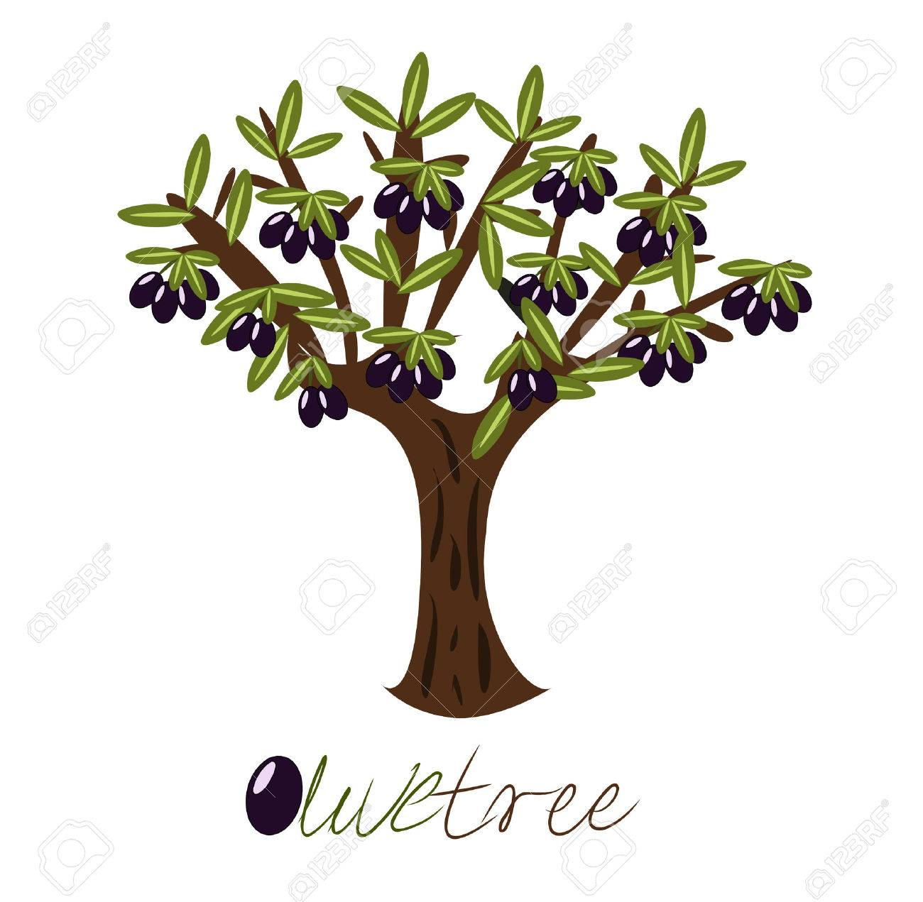 Olive tree full of black olives. Stock Vector - 7788381