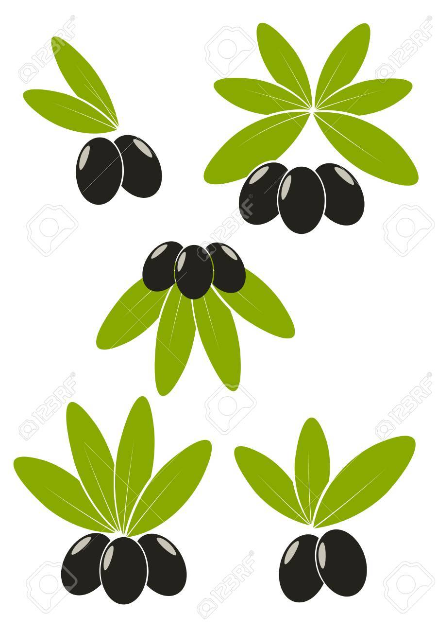 Set of black olives with leaves emblems Stock Vector - 7829827
