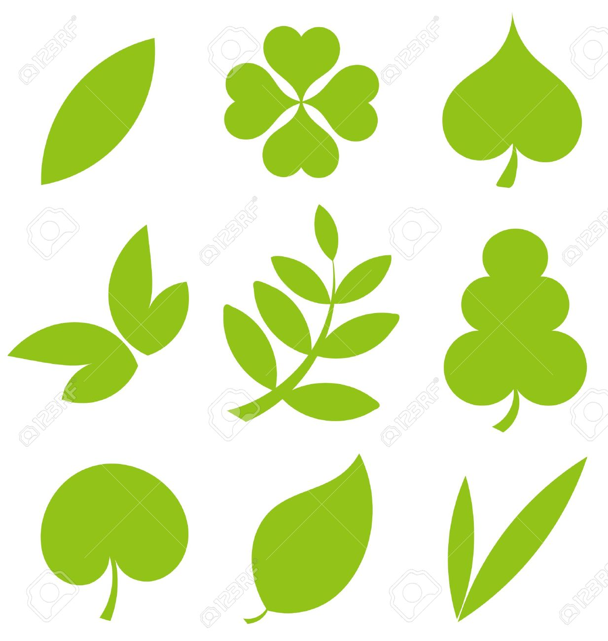 set od various tree leaves vector illustration royalty free rh 123rf com vector leaf design vector leaf border