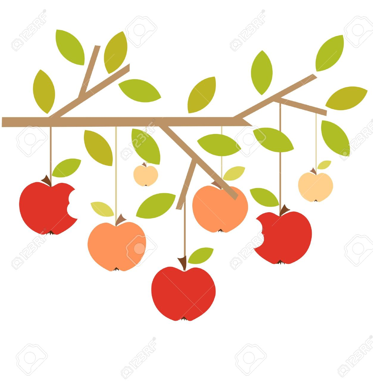 Apple Tree Stock Illustrations Cliparts And Royalty Free Apple - Apple tree apples on tree branch autumn vector illustration