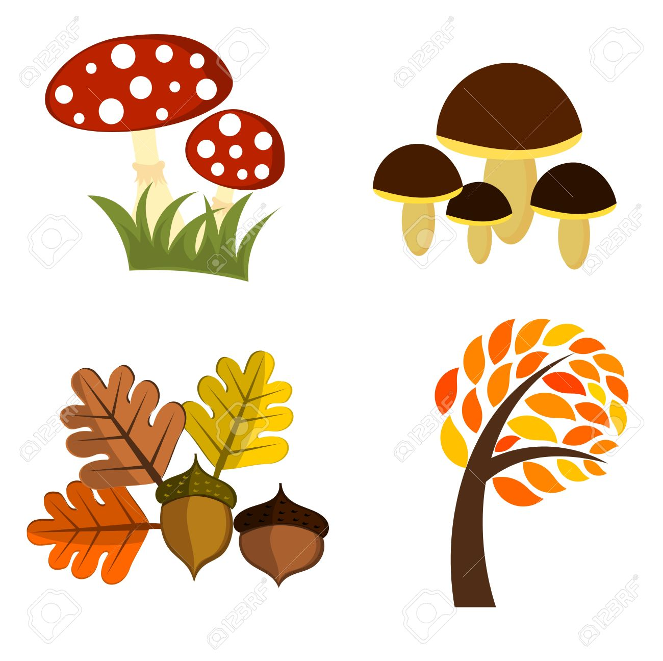 Autumn elements for design. Vector illustration Stock Vector - 11084308