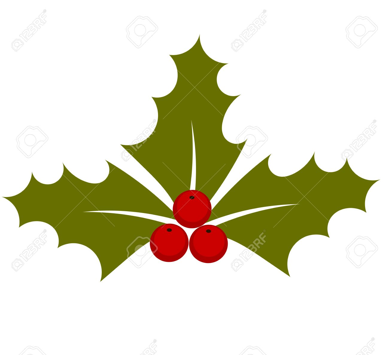 Holly Berry Plant Symbol Of Christmas. Illustration Royalty Free ...
