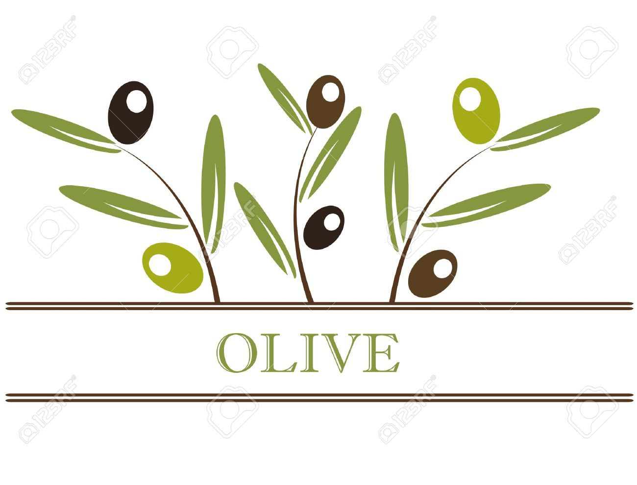 Olive branch label. Vector illustration Stock Vector - 12935255