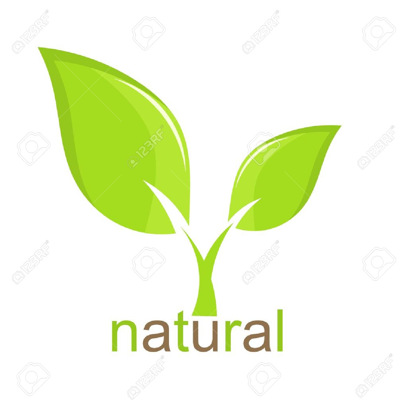 Green leaf natural icon. Vector illustration Stock Vector - 13142441