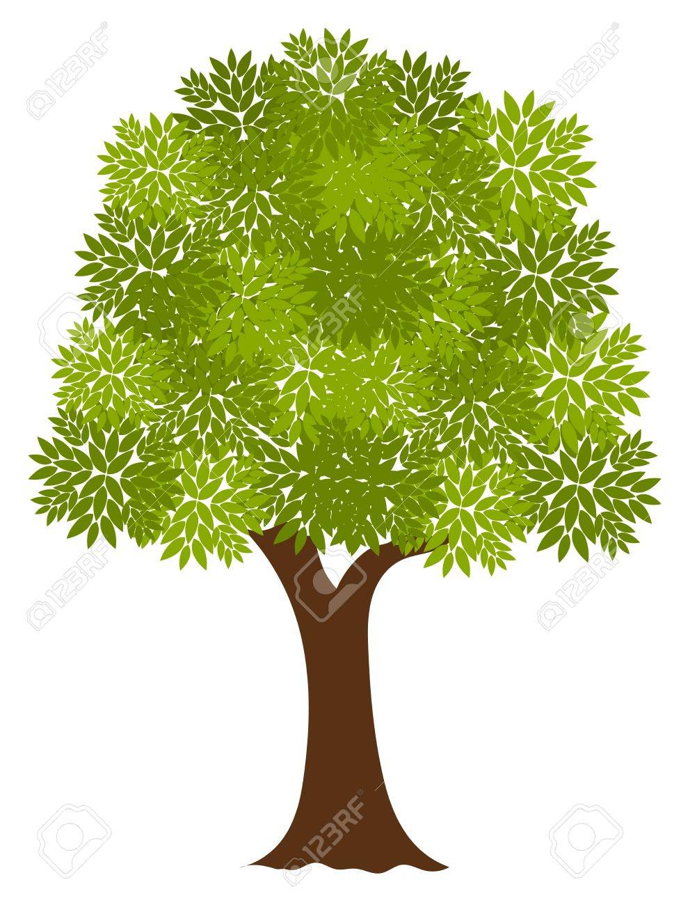 Noble old tree. Vector illustration - 15027421