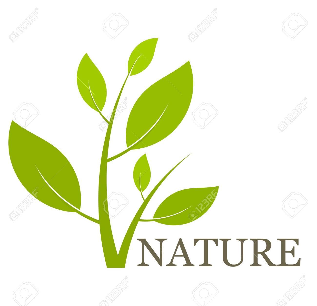 nature concept green plant vector illustration royalty free rh 123rf com plan vectoriel plant vector illustrator