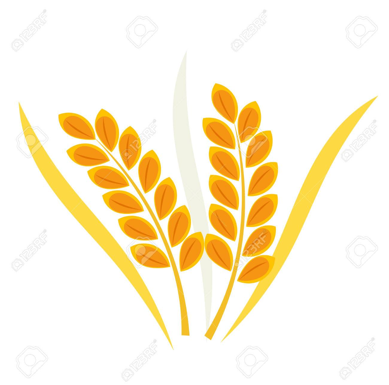 Как сделать колосья пшеницы